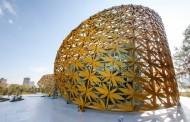 سازه پروانه; جزیره نور، شارجه، امارات